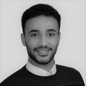 Amir Emil Software Developer